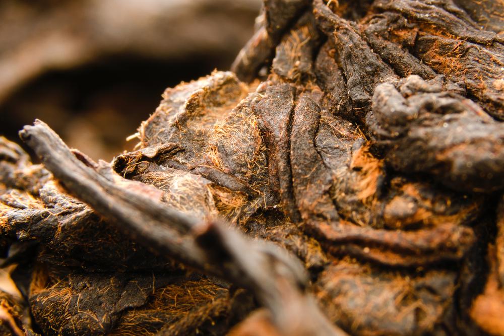 Poo Poo Pu-erh Tea, salah satu teh termahal di dunia. (Shutterstock)