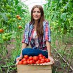 Ilustrasi petani terkaya di dunia. (Shutterstock)